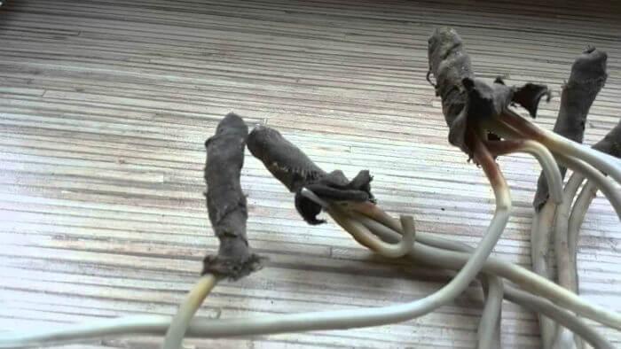 Неисправности электропроводки: короткое замыкание